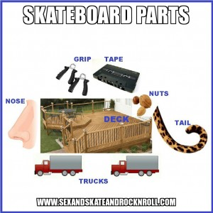 Do you know the parts of a skateboard