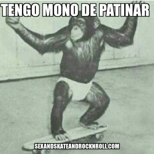skater-monkey-on-a-skateboard-mono-de-patinar-sex
