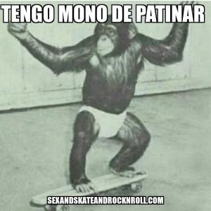 skater-monkey-on-a-skateboard-mono-de-patinar-sex