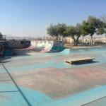 fotos-skatepark-Alicante-bowl